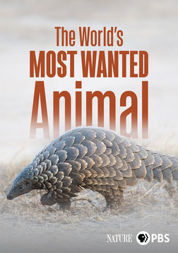The World's Most Wanted Animal